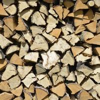 Vermietung Holzspalter